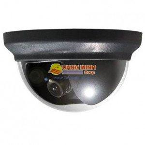 Camera Avtech KPC132 zEp