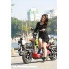 Xe đạp điện Giant M133 SX