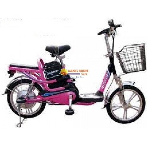 Xe đạp điện Hitasa i 2013
